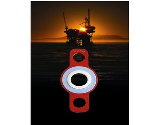 The flange rescue gasket