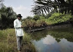 A farmer next to one of the polluted ponds at Ikot Ada Udo in Nigeria's Delta region
